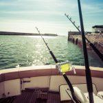釣りシーズン到来!良く釣れる釣りスポットとは
